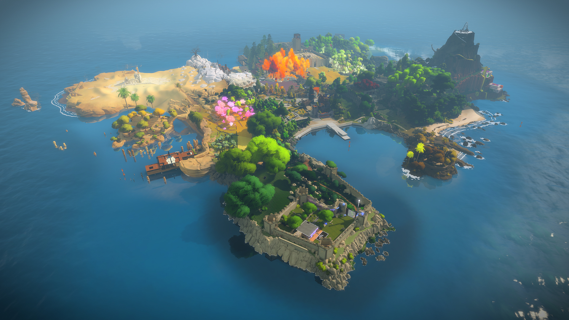 the witness review 5