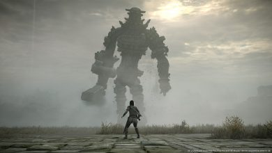 Photo of Shadow of the Colossus